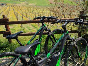 e-bike a san giorgio